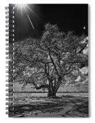 Stardom Bw Spiral Notebook