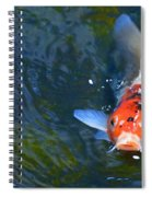 Stare Down With A Koi Spiral Notebook
