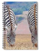 Stares And Stripes Spiral Notebook