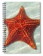 Starfish 3 Of Bottom Harbour Sound Spiral Notebook