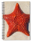 Starfish 4 Of Bottom Harbour Sound Spiral Notebook