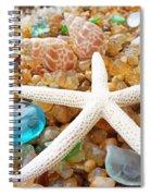 Starfish Art Prints Shells Agates Coastal Beach Spiral Notebook
