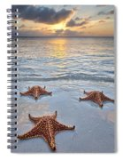 Starfish Beach Sunset Spiral Notebook
