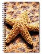 Starfish Enterprise Spiral Notebook
