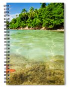 Starfish In Clear Water Spiral Notebook