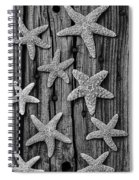Starfish On Old Wood Black And White Spiral Notebook