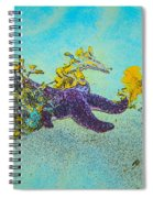Starfish Paradise Spiral Notebook