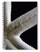Starfish Underworld Spiral Notebook