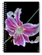 Stargazer 2 Spiral Notebook