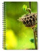 Stark Beauty Spiral Notebook