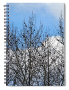 Starlings In The Cottonwoods Spiral Notebook