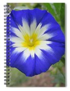 Starry Blue Enchantment Spiral Notebook