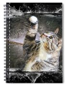 Starry Night Kitty Style Splash Spiral Notebook
