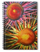 Stars With Colors Spiral Notebook
