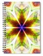 Starseed Rainbow Spiral Notebook