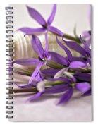 Starshine Laurentia Flowers And White Shell Spiral Notebook