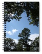 Stately Forest  Spiral Notebook