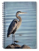 Stately-great Blue Heron Spiral Notebook