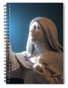 Statue 22 Spiral Notebook