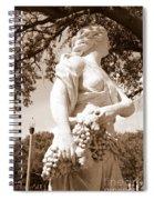 Statue In St Petersburg Spiral Notebook