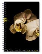 Stay Awake Spiral Notebook