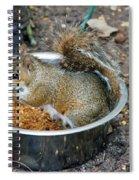 Stealing Food Spiral Notebook