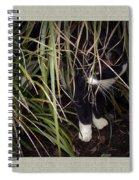 Stealth Cat Spiral Notebook