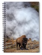 Steamed Bison Spiral Notebook