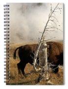 Steaming Bison Spiral Notebook
