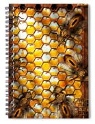 Steampunk - Apiary - The Hive Spiral Notebook