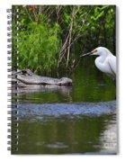 Steely Snowy Spiral Notebook