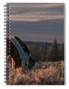 Steens Sundown Spiral Notebook