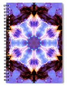 Stellar Spiral Eagle Nebula IIi Spiral Notebook