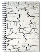 Step On A Crack Spiral Notebook