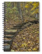 Step Trail In Woods 12 Spiral Notebook