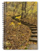 Step Trail In Woods 16 Spiral Notebook