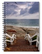 Steps And Pelicans Spiral Notebook