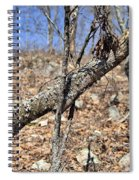 Sticks And Stones Spiral Notebook