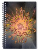 Stigma - Photopower 1072 Spiral Notebook