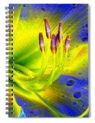Stigma - Photopower 1157 Spiral Notebook