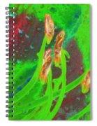 Stigma - Photopower 1161 Spiral Notebook