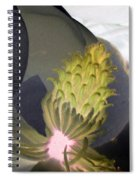 Stigma - Photopower 997 Spiral Notebook