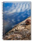 Still Spiral Notebook
