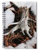 Still In Snow Spiral Notebook