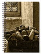 Still Life At Chenonceau Spiral Notebook