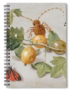 Still Life Of Branch Of Gooseberries Spiral Notebook