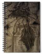 Still Life One Dried Sunflower In Metal Jug Spiral Notebook