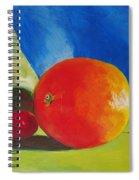 Still Life Painting Spiral Notebook