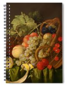 Still Life With A Basket Of Fruit Spiral Notebook