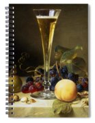 Still Life With A Glass Of Champagne Spiral Notebook